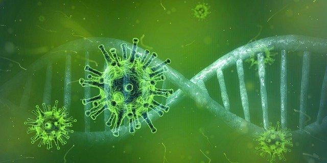 coronavirus en ronda
